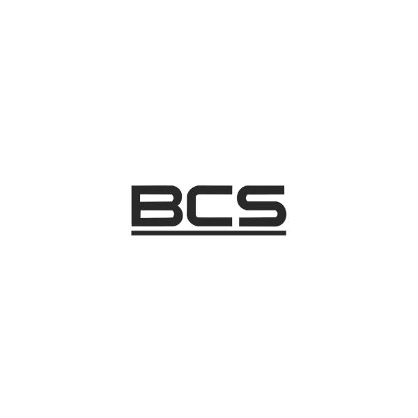 format-ms_logo_bcs