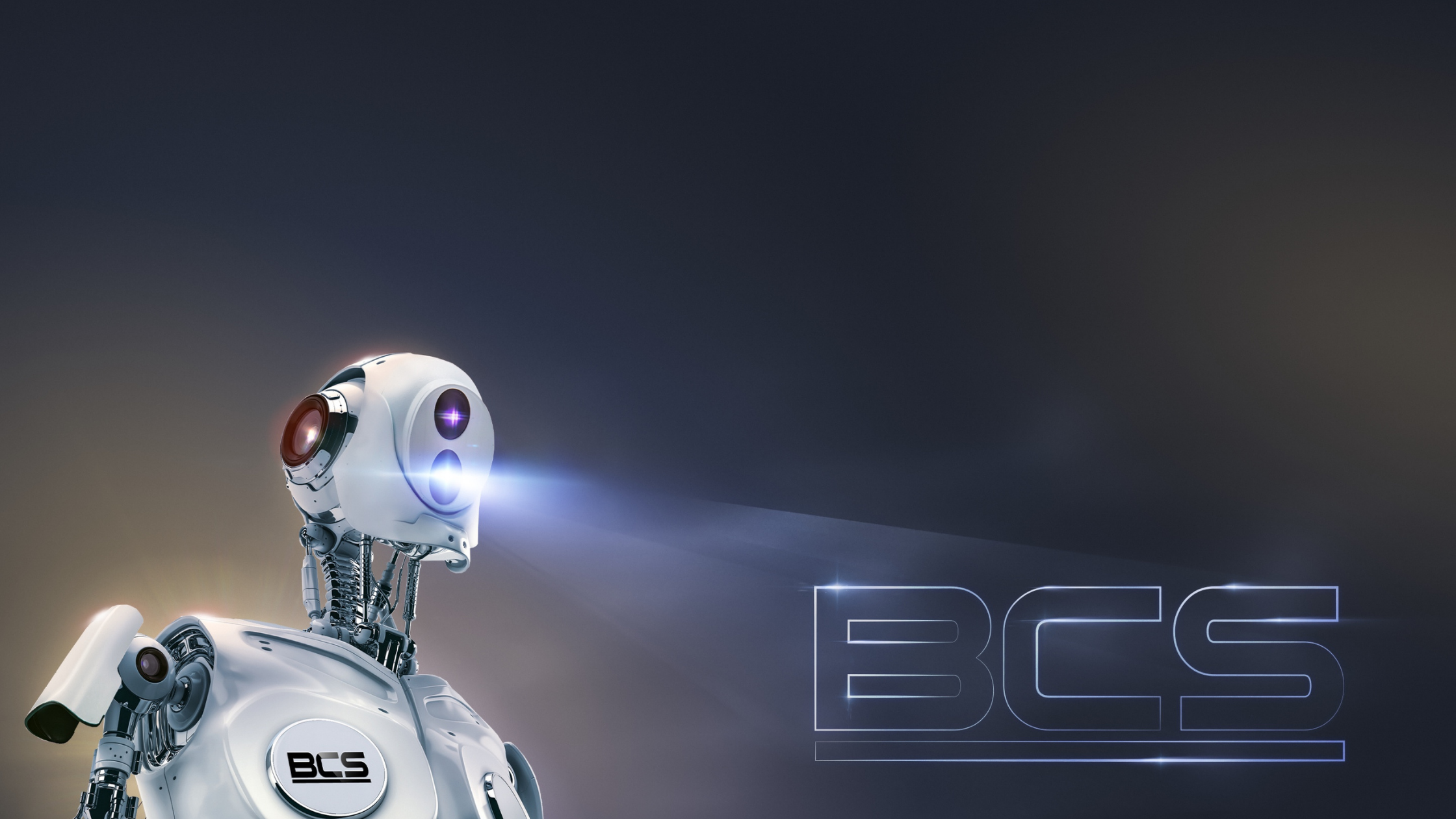 BCS - baner - HEADERS-2