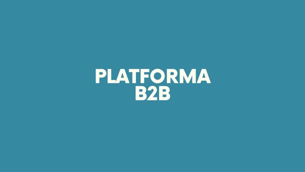 Platforma B2B - Format-MS Plus